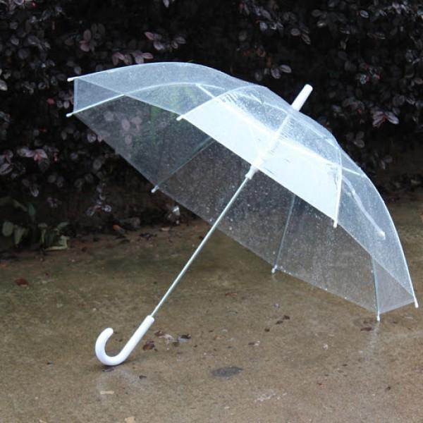 Paraguas Transparentes Para Bodas Y Eventos