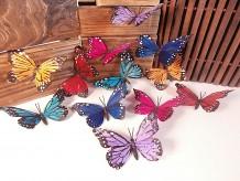 Mariposas imán