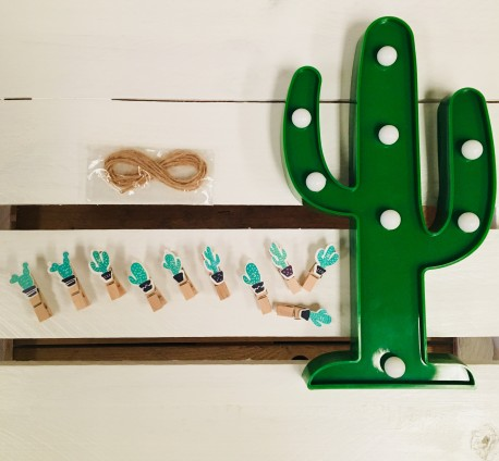 Mini pinzas cactus